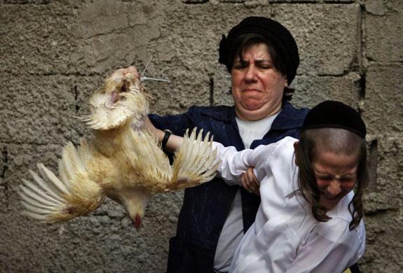 Kaparot ritual in Israel