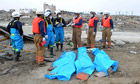 Tsunami victims in blue body bags