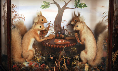 Stuffed squirrels from Potter's Museum of Stuffed Animals