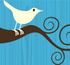 Twitter bird logo