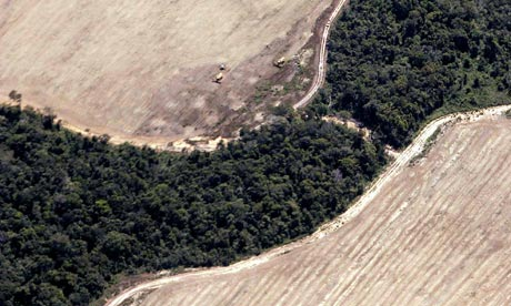 Aerial view of advancing deforestation in the Amazon Basin
