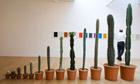 Martin Creed Exhibition