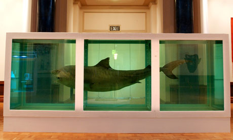 Damien Hirst's The Physical Impossibility of Death in the Mind of Someone Living (1991)