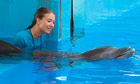 Austin Highsmith in Warner Bros' Dolphin Tale
