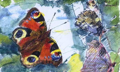 David Measures butterfly painting