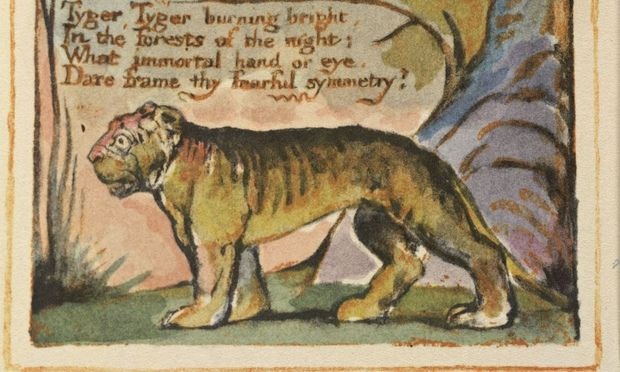 an analysis of rhythm in william blakes the tyger Analysis of william blake's poems essay sample this simple poem is two stanzas of six lines each the two stanzas each follow an abcddc rhyme scheme, a contrast to.