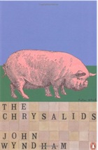 the belief of the true image in the chrysalids by john wyndham Duncan lawie has sent a review of john wyndham's the chrysalids  your post deviates from the true image of the slashdot post as  the chrysalids aka re-birth.