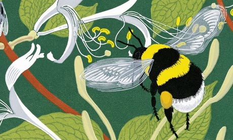 Bumblebees,  one of the New Naturalist series