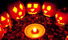 Halloween pumpkins in a circle at twilight