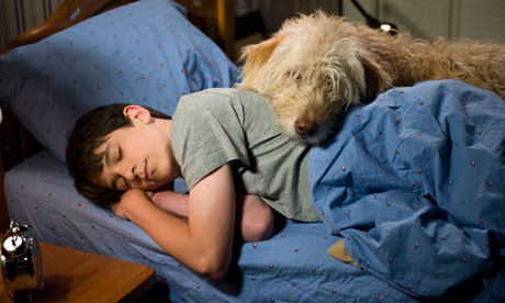 Be the first to see the new Wimpy Kid film! - competition | Children's