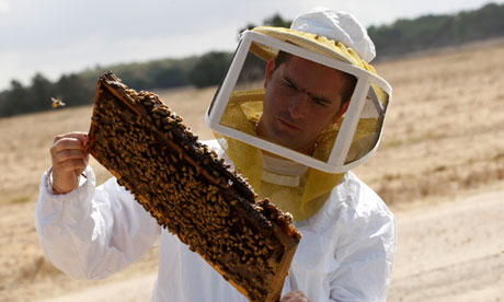 Beekeeper