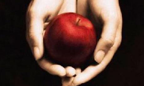 Twilight book cover crop