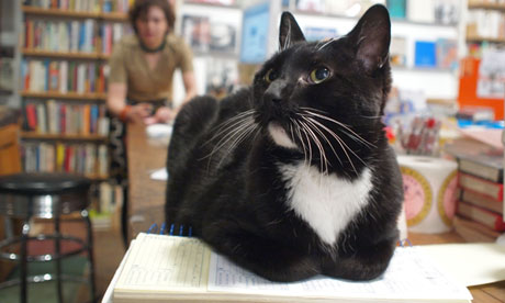Tuxie on book