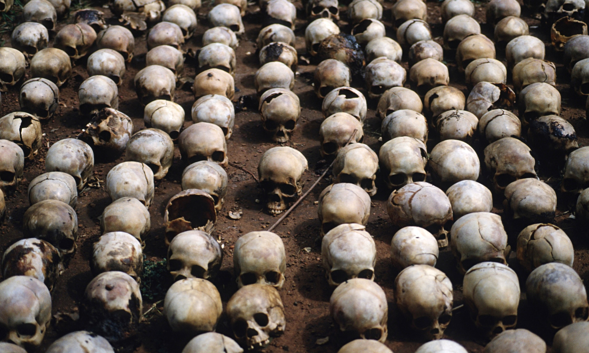 rwanda genocide who is to blame Chinaview: west is to blame for rwandan genocide in 1994: rwandan president rwandan president paul kagame on wednesday accused western countries of adopting an indifferent attitude toward.