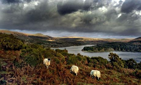 Quartz and Feldspar: Dartmoor by Matthew Kelly – a British landscape in modern times