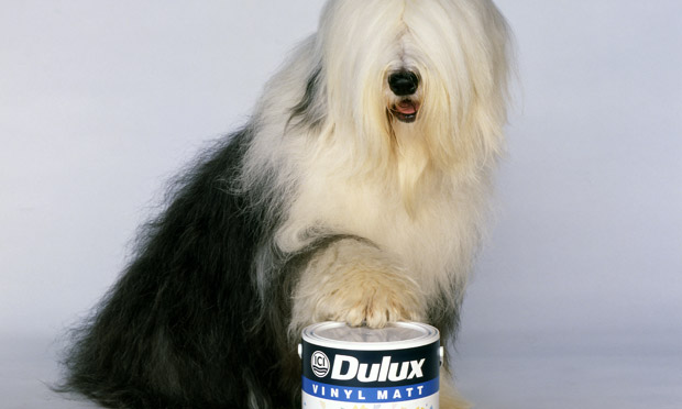 Dulux-maker writes dow...