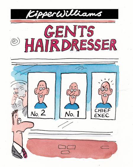 Kipper Williams cartoon: Bald men do better