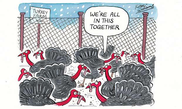 Kipper Williams - turkeys