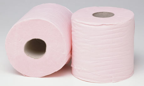 [Image: Two-pink-toilet-rolls.-001.jpg]