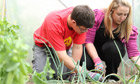 Pupils gardening at Beechwood College