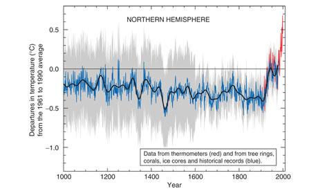 Michael Mann's graph of temperature dubbed the