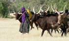 Modern and Mobile : The future of livestock production in Africa's drylands