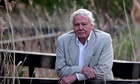 Sir David Attenborough during an interview at London Wetland Centre in Barnes