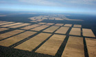  Deforestation South America, Chaco in Paraguay