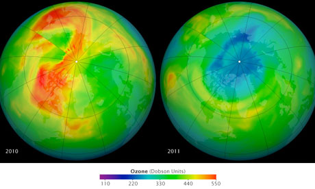 maps of ozone concentrations over the Arctic