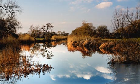 Country Diary : The River Stour at Cut Mill near Sturminster Newton in Dorset.