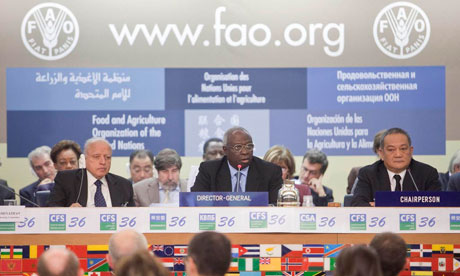 MDG: FAO : Committee on World Food Security