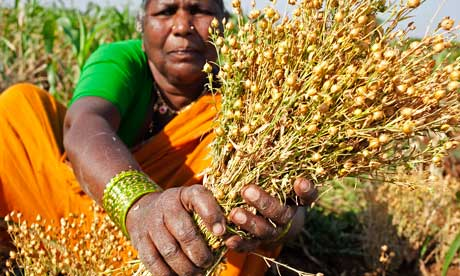 Dalit women fighting starvation in Andhra Pradesh ,