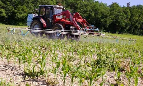 Leo blog : Farmer spraying  pesticides