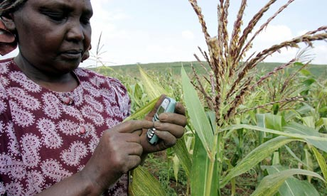MDG : Activate : a Kenyan farmer sending a text message with her mobile phone