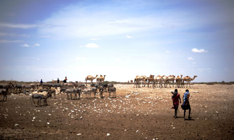 MDG : Drought in Somalia