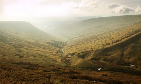Country Diary : land ruined by forestry clear-felling in Cambrian Mountains