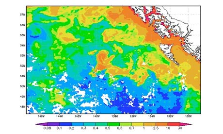 Geoengineering with bloom : high concentrations of chlorophyll in the Eastern Gulf of Alaska