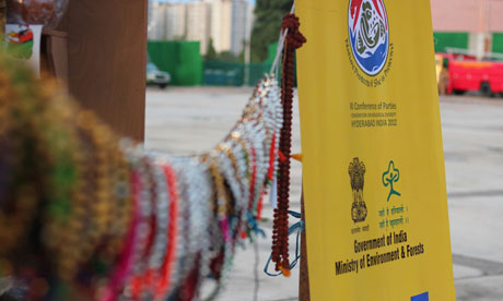 COP11 to the Convention on Biological Diversity at Hyderabad, India
