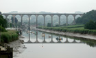 Country Diary : Calstock viaduct across the Tamar, Devon