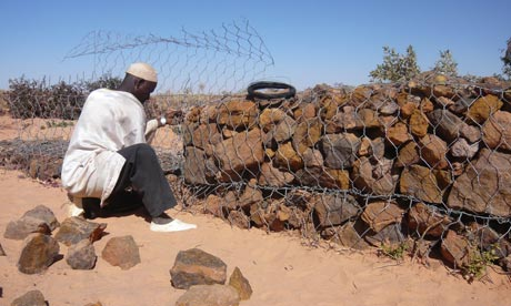 MDG : Sahel : Drought and Resilience in Niger : Men built a wall to channel the next rain