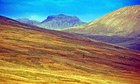 Country Diary : Scafell Pike seen from Cold Fell.
