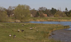 Country Diary : Steggall Hide at Lackford Lakes, Suffolk Wildlife trust