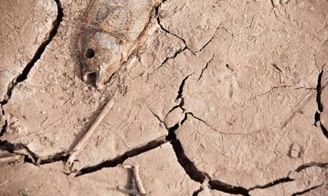Extreme weather : Drought in  Spain's Canary island of Gran Canaria