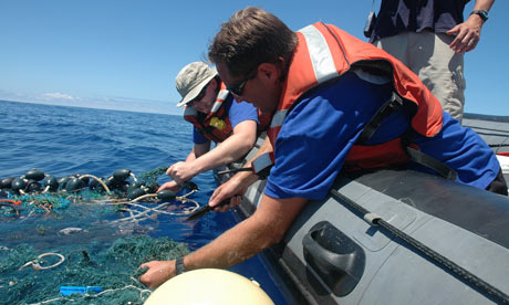 Plastic Trash Altering Pacific Ocean Habitats, Scripps Study Shows : SEAPLEX researchers
