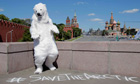 Greenpeace Campaign to make the arctic a global sanctuary