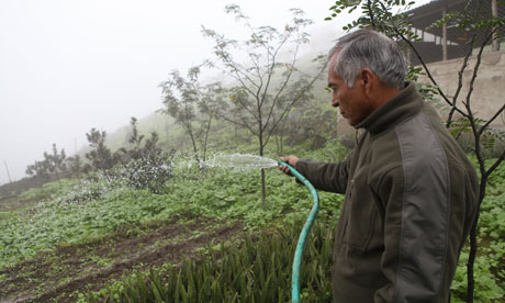 MDG : Peru : Fog nets in Lima 