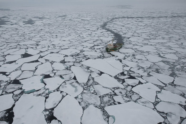 John Vidal in arctic : Sea Ice Minimum : Greenpeace MY Arctic Sunrise ship expedition
