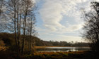 Country Diary : Burton Mill Pond, West Sussex, in winter