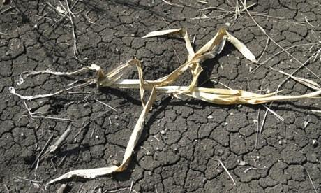 MDG : Angola Blog : Severe drought in south west Angola
