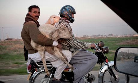 Pakistan road safety